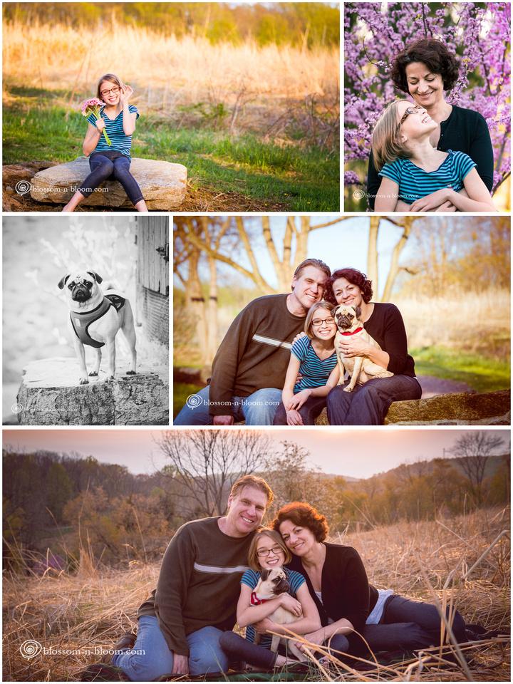 Family Photographer, Philadelphia Area Photographer, Chester County Photographer, Portrait Photographer, Pet photographer