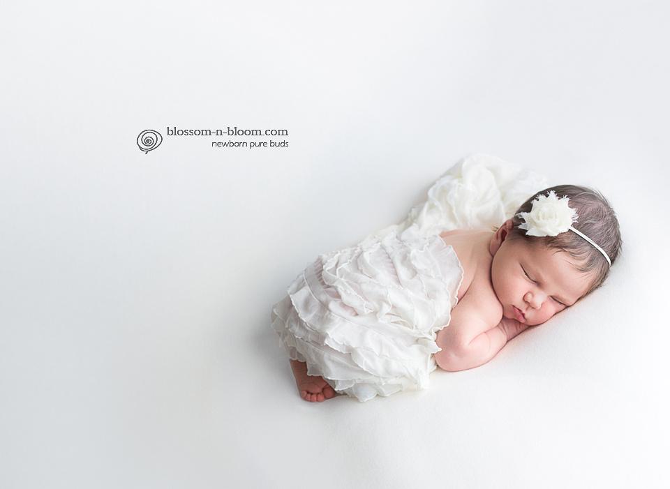 Philadelphia Newborn Photographer, Chester Springs Newborn Photographer, Newborn Photography, Styled Newborn Photography