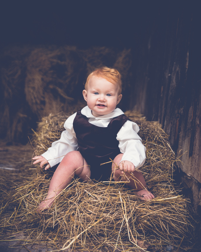 portrait of a baby boy from family photography session at Springton Manor Farm by Philadelphia area photographer Annmarie Kopey